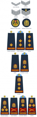 Tanzanian People's Defence Force-Naval Command.png
