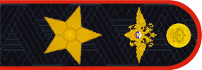 Russian_police_general_new_3 ноября 2014.png